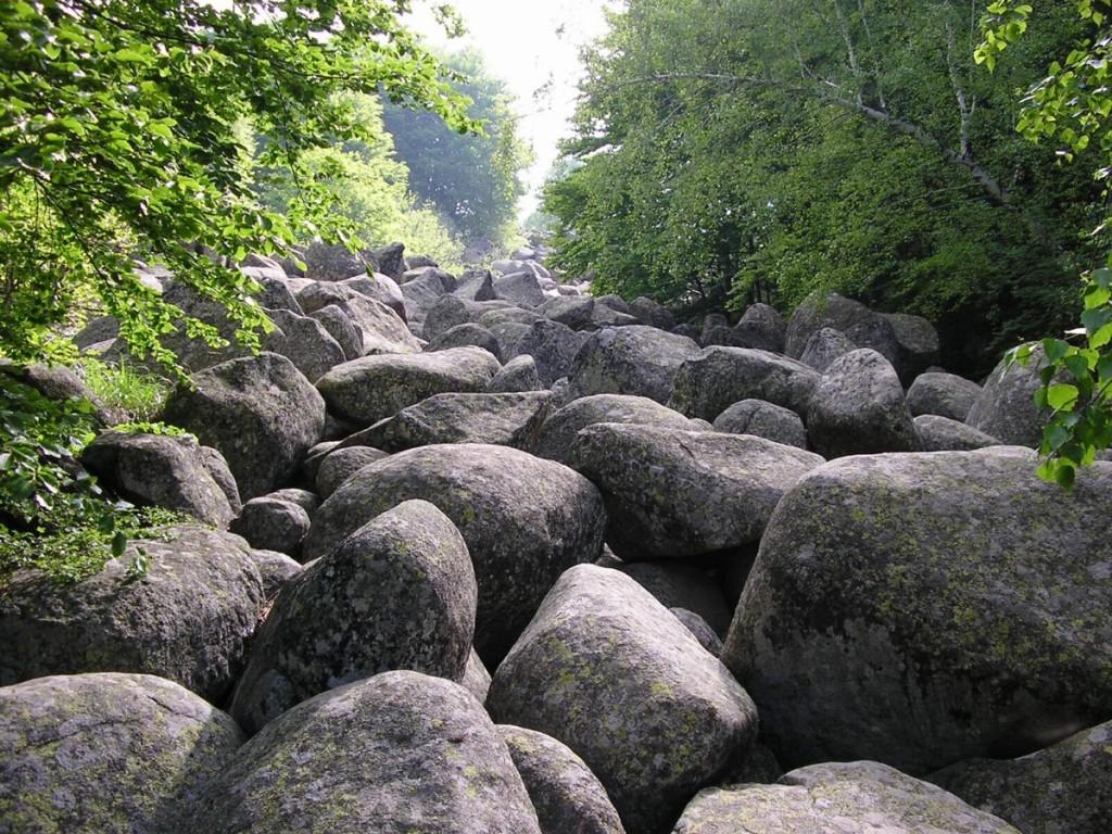 Каменните реки на Витоша